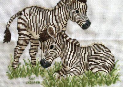 Sue H, IN-zebra